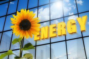 energy broker bond