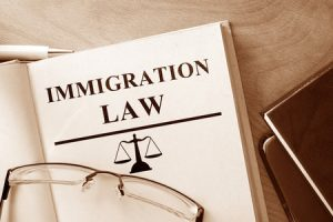 Immigration Consultant Bonds