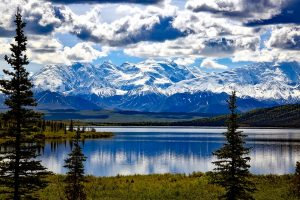 surety bond services in alaska
