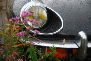 Michigan Vehicle Dealer Bond