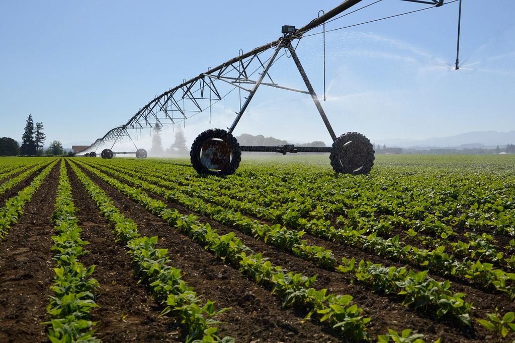 North Carolina Irrigation Contractor Bond