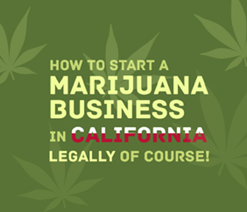 Marijuana Business in California img
